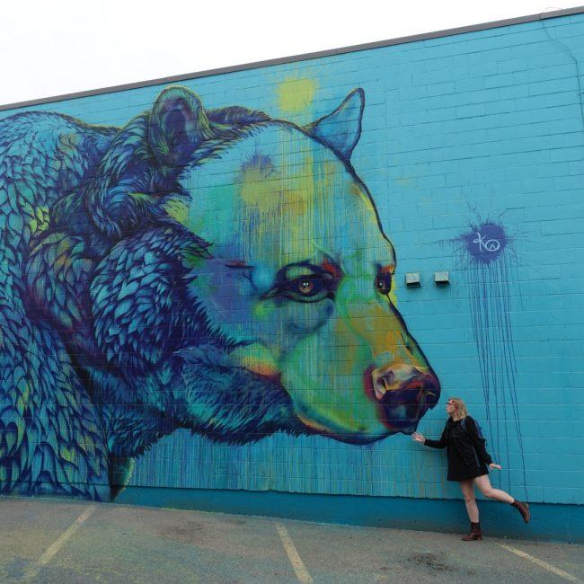 Oh, a bear!